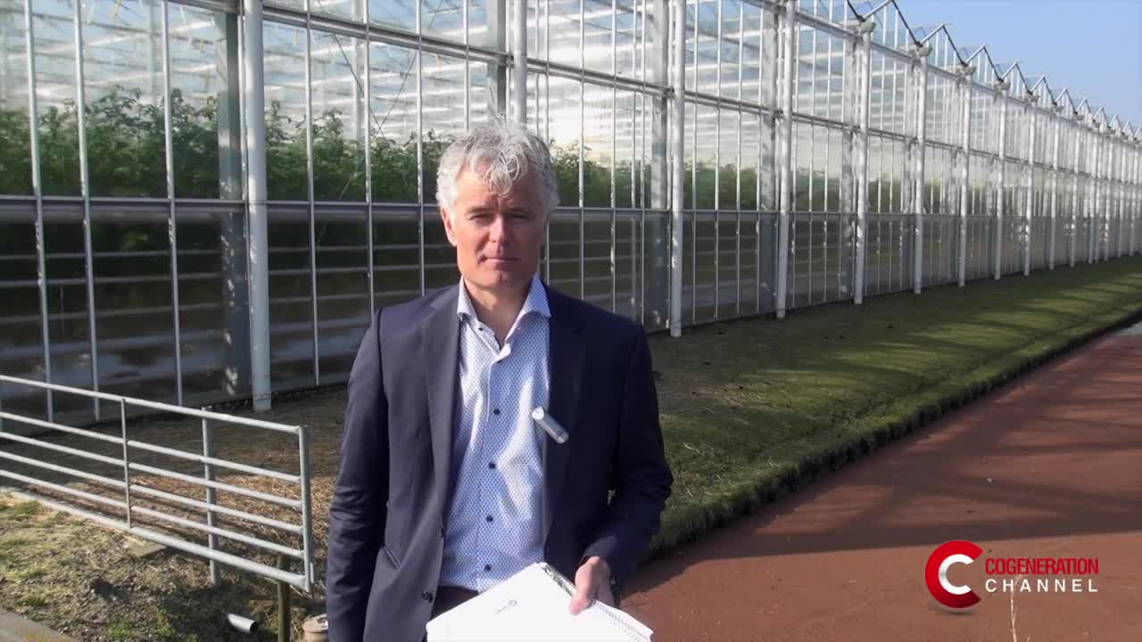 Cogeneration for Dutch greenhouses
