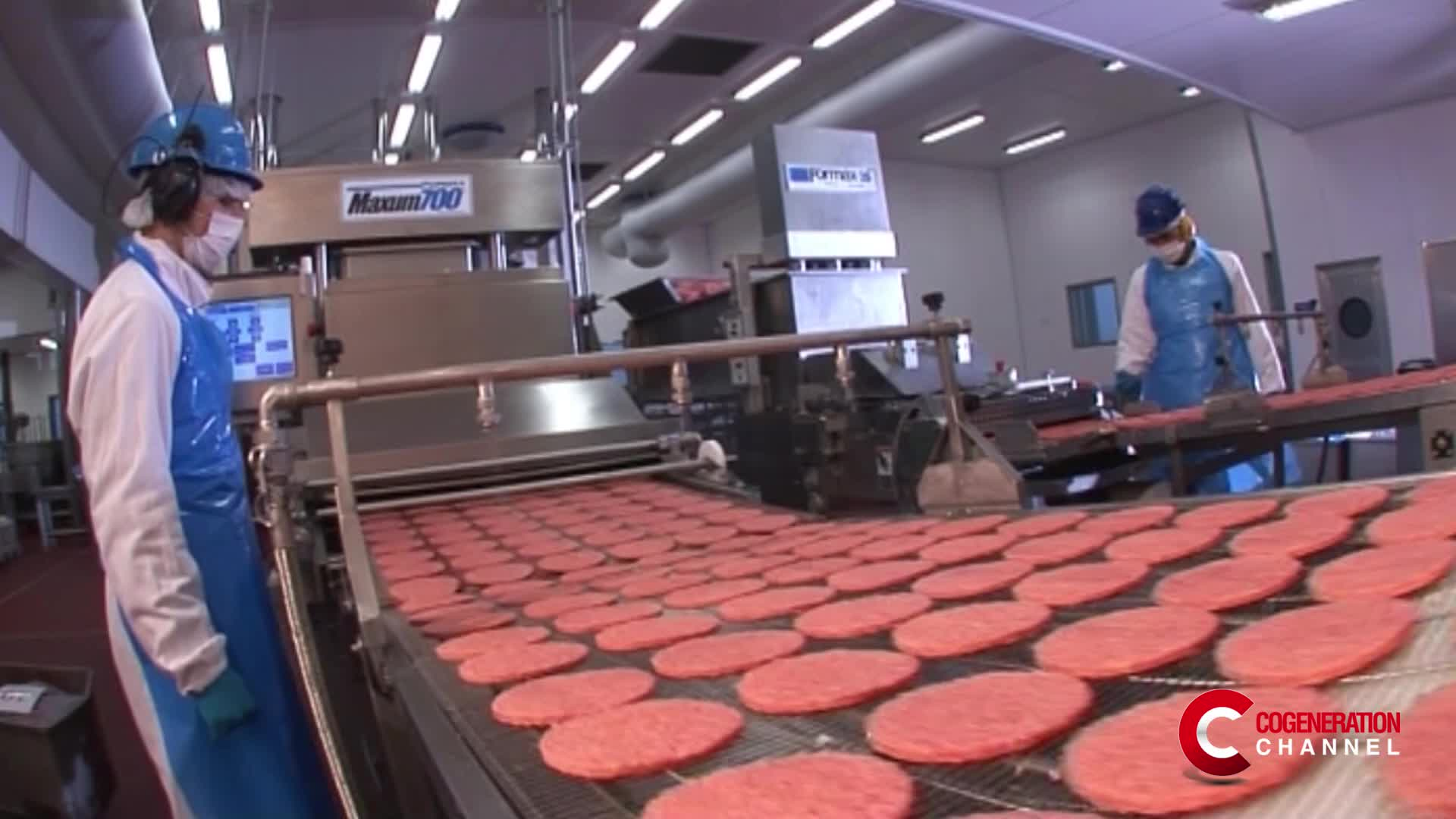 Cogeneration applied to the meat industry: the new entrepreneurial vision of Inalca