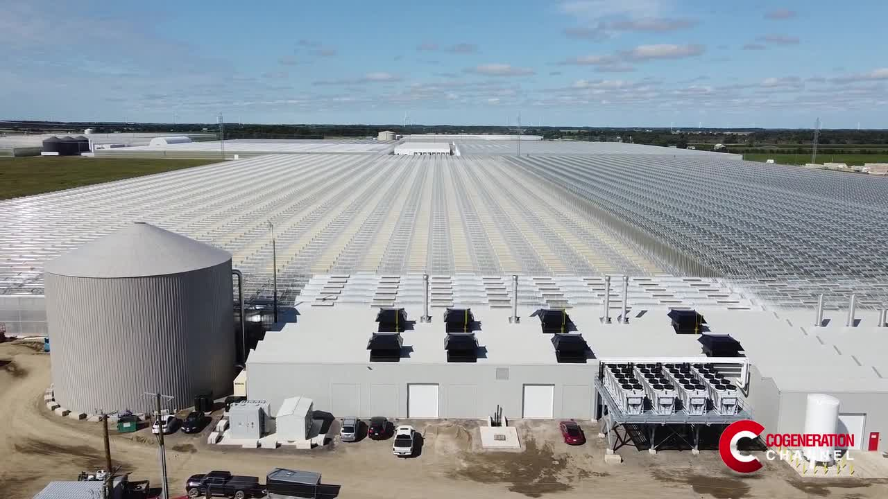 Multiple benefits for Under Sun Acres, Canadian greenhouse with a 13.3 MW cogeneration plant funded by the CHPSOP 2 Program
